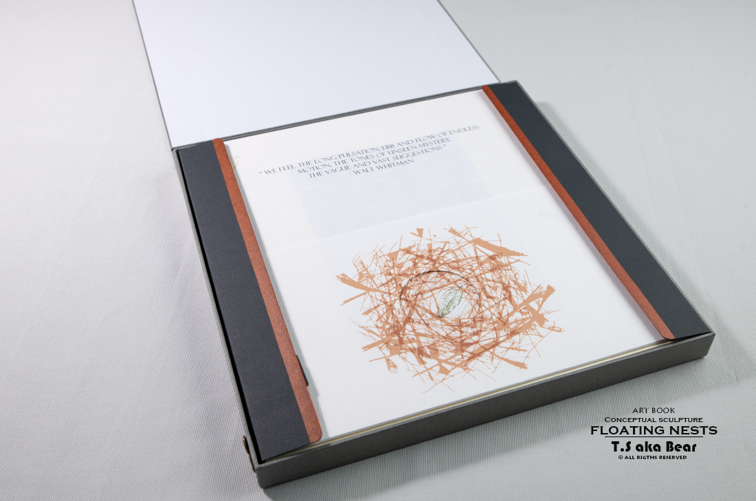Art book - Conceptual sculpture - Floating Nests   3 Min 57 s by Tiong-seah Yap [ T.S aka Bear ] Year 2018 © All rights reserved